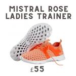 pair of ladies trainers