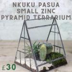 beautiful holder for indoor plants